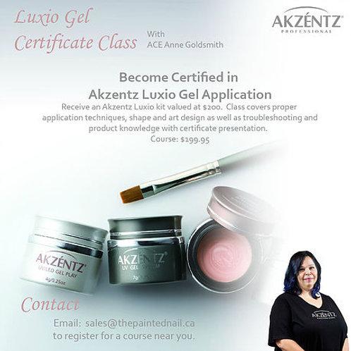 Luxio Certification Class