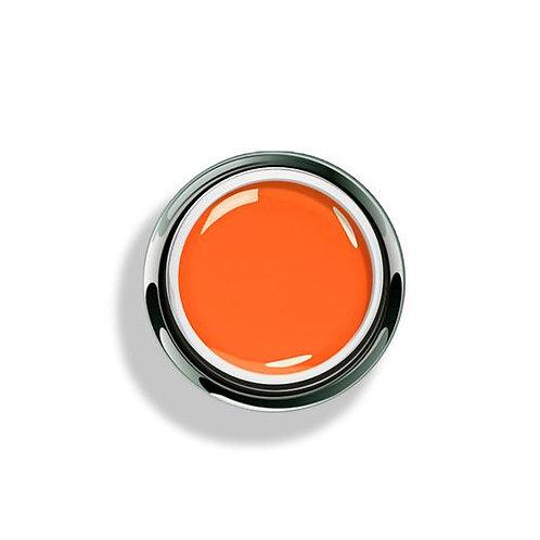 Orange Paint - 4g