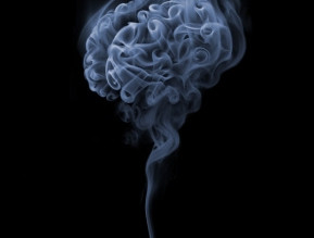 Smoking may produce excessive immature neurons