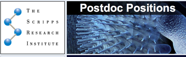 Postdoc positions available in the lab and the department