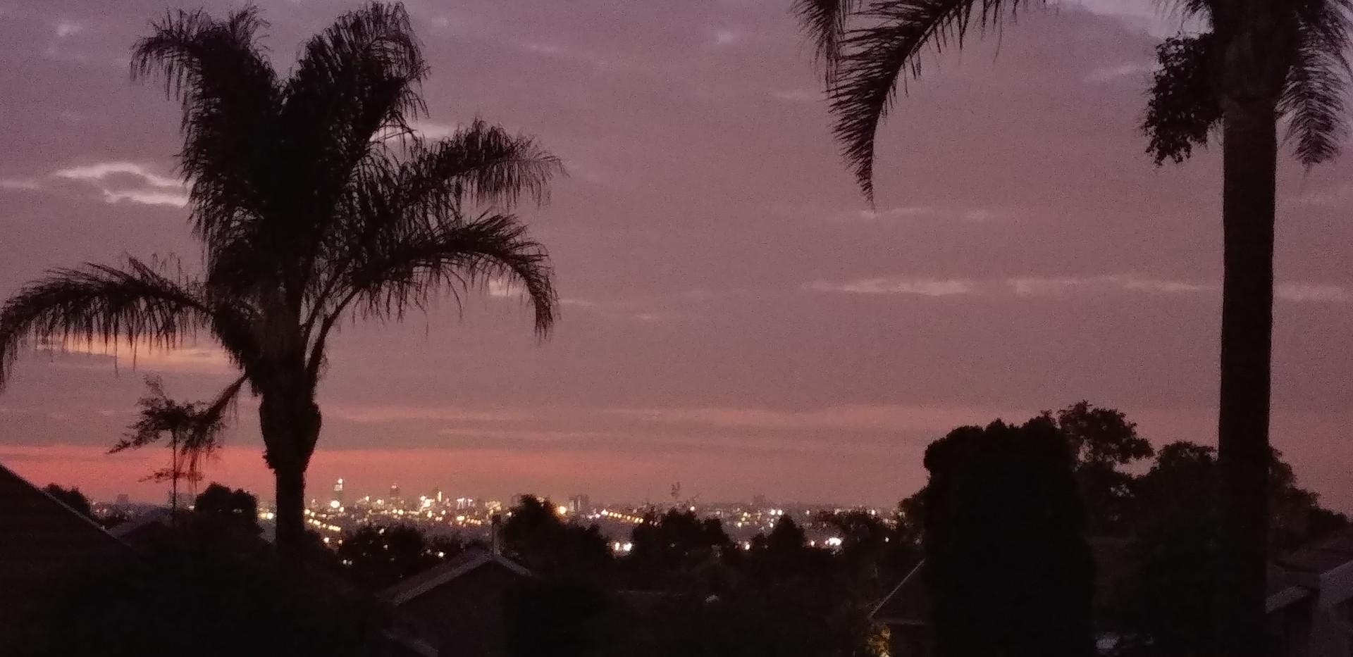 Forrest Lane skyline