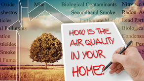 What are Volatile Organic Compounds?