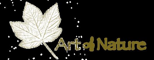 Art-of-Nature_logo-4.0.png