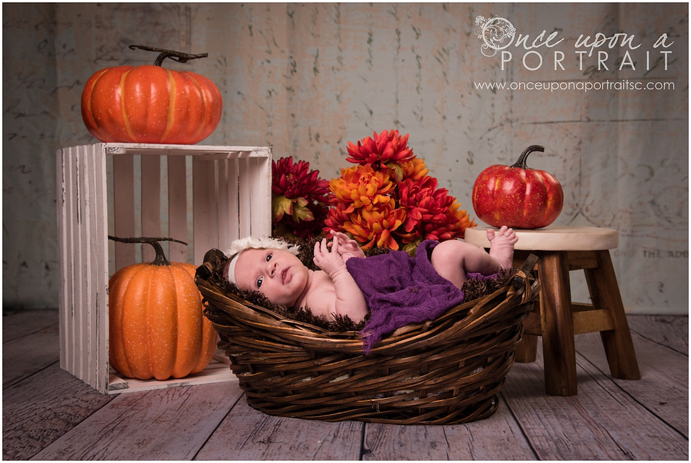 Newborn baby girl with headband pumpkins and mums in studio in Simpsonville South Carolina