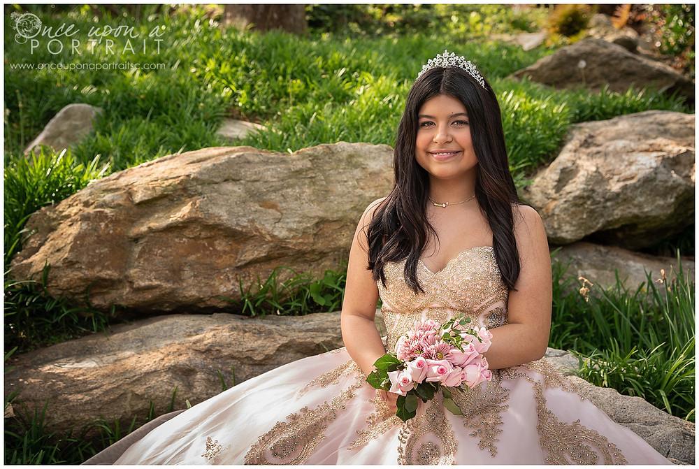 Falls Park Quinceañera 15 sweet sixteen 16 princess ballgown