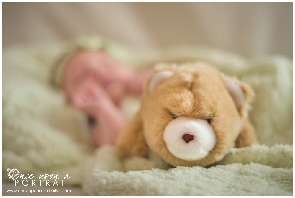 newborn baby girl with teddy bear stuffed animal session with green headband in Simpsonville South Carolina