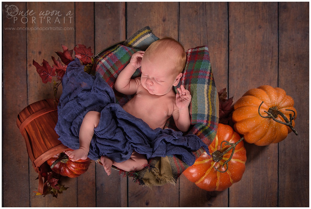 fall theme newborn session baby boy pumpkin orange studio basket