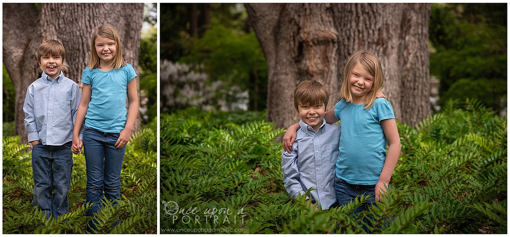 Family session Lace House columbia spring blue green siblings kids ferns trees