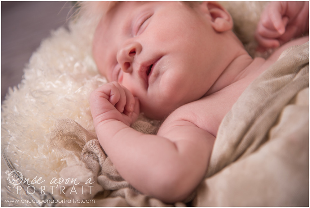 Newborn baby girl with headband and flowers with hands detail in studio in Simpsonville South Carolina