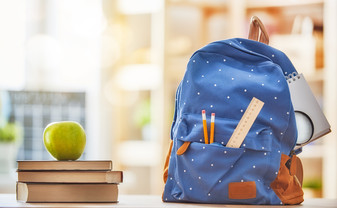 Evaluación de Programas de Prevención de la Violencia Basados en Escuelas: Un Meta-Análisis