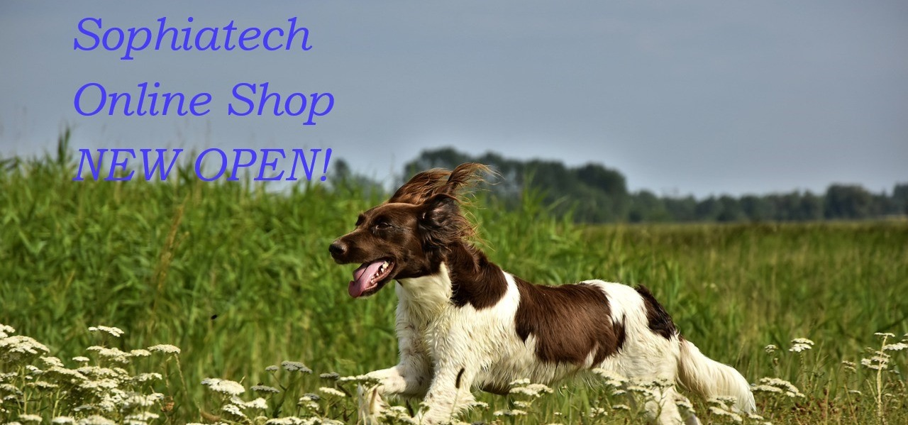 online shop 告知 犬