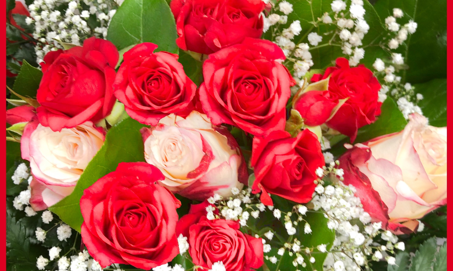 Bouquet Roses_rouges_gypso_autant_de_fle