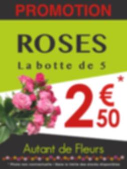 Autant de Fleurs Promo Roses par 5
