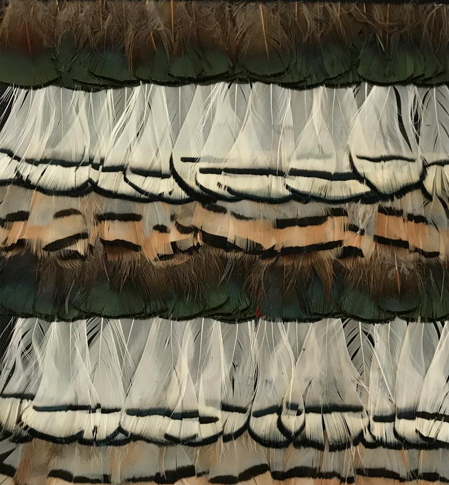 fabric-pheasant-types
