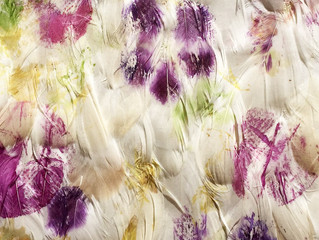 Feather's fabric printed with natural pigments