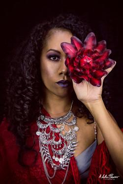 Ebony Goddess Model Shoot