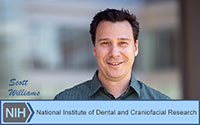 SCOTT WILLIAMS RECEIVES NIH/NIDCR GRANT FOR STEM CELL STUDY