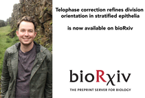 "Kendall uploaded his paper ""Telophase correction refines division orientation in stratified epi"