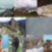 Collage_17D.jpg
