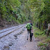 Inka Jungle | Cuzco | Peru Travel