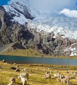 Ausangate Trek | Cuzco | Flamenco Travel
