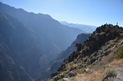 Cañon Colca   Cuzco   Peru Travel