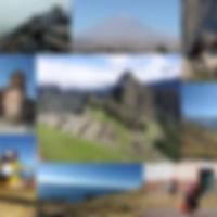 Collage_14D.jpg
