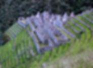 Inca Trek 2D Ikona.jpg