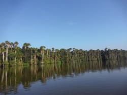 Amazonia Puerto Maldonado   Cuzco  