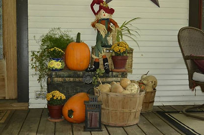 Two pumpkins out of my pumpkin patch this year....decorating for Fall on the front porch..