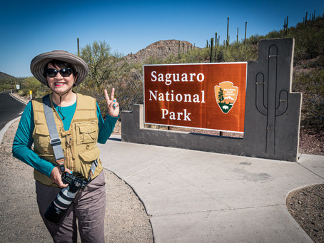 How Accessible Is Accessible: Saguaro National Park