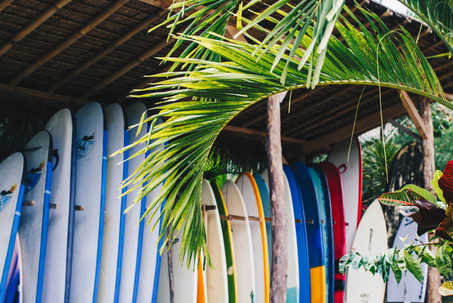 Our surfboard collection