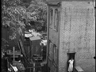 A History of Capitol Hill Alleys
