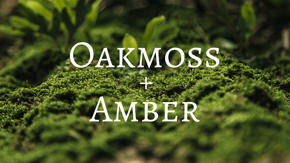 Oakmoss and Amber