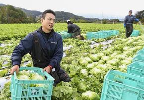 Agriculture-innovating.jpg