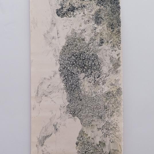 Lichen/glace/pierre