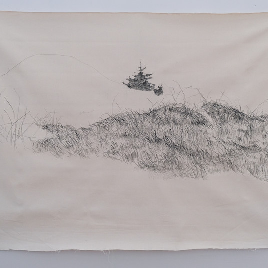 Épinette de bord de mer et neige (Anticosti)