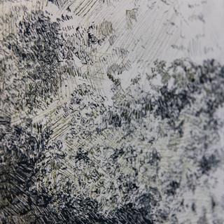 11._Lichens_et_neige_sur_rocher_(détail)
