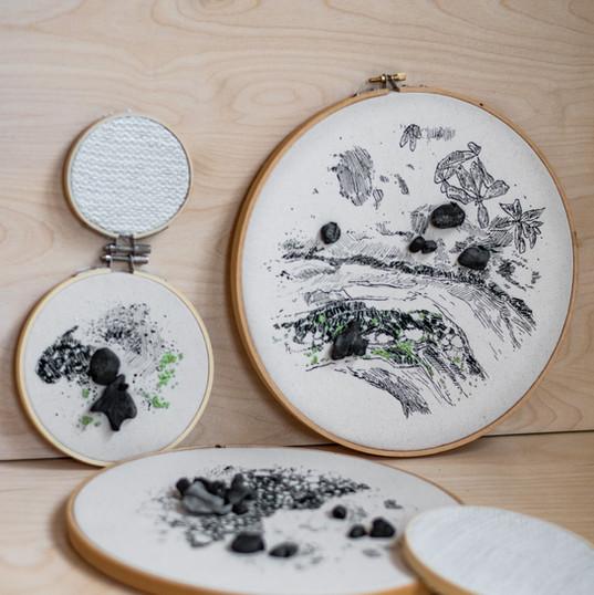 Série Lichens sur rocher