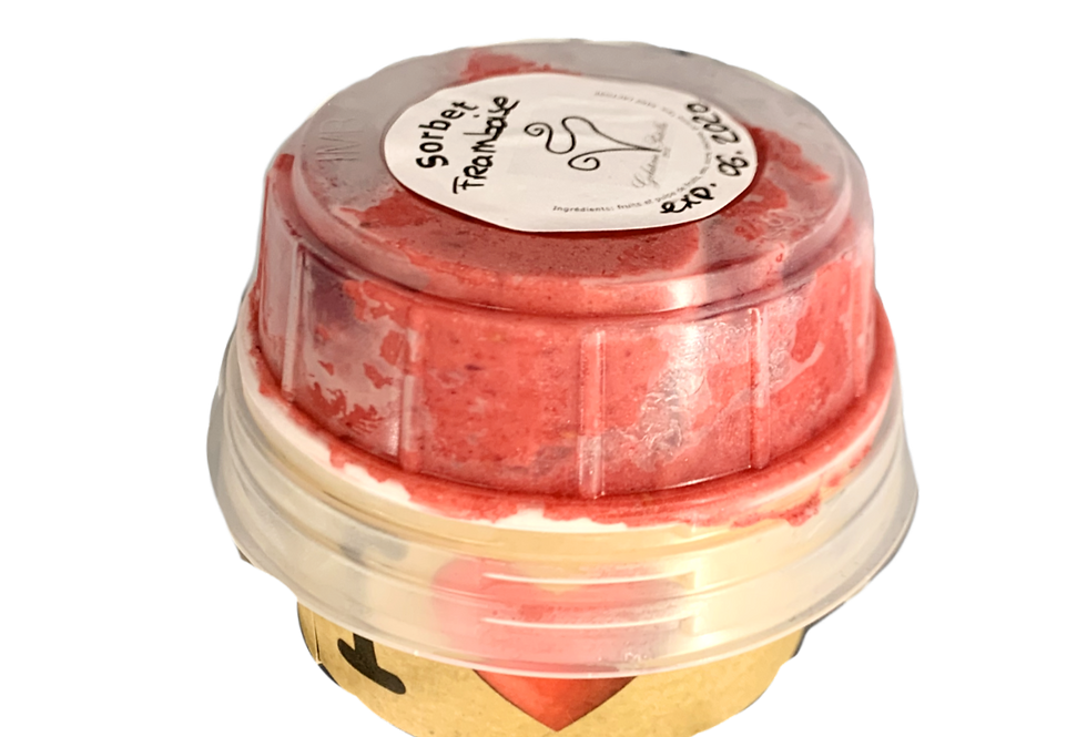 Glace Artisanale Gelateria Patella 100g