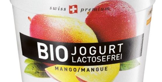 Yogourt mangue sans lactose bio Bidermann 125g