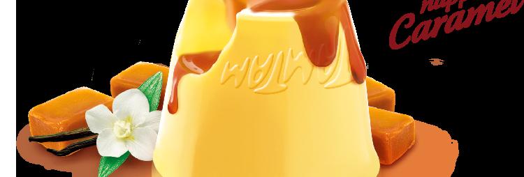 Dessert flan vanille caramel Tamtam 2 x 125g
