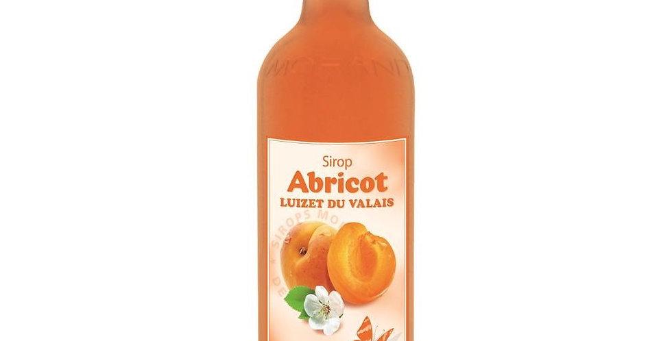 Sirop Morand abricot luizet