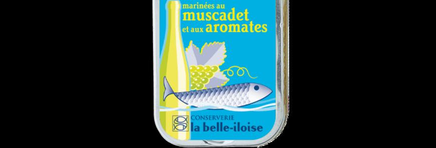 Sardines marinées muscadet aromate la belle-iloise 115g