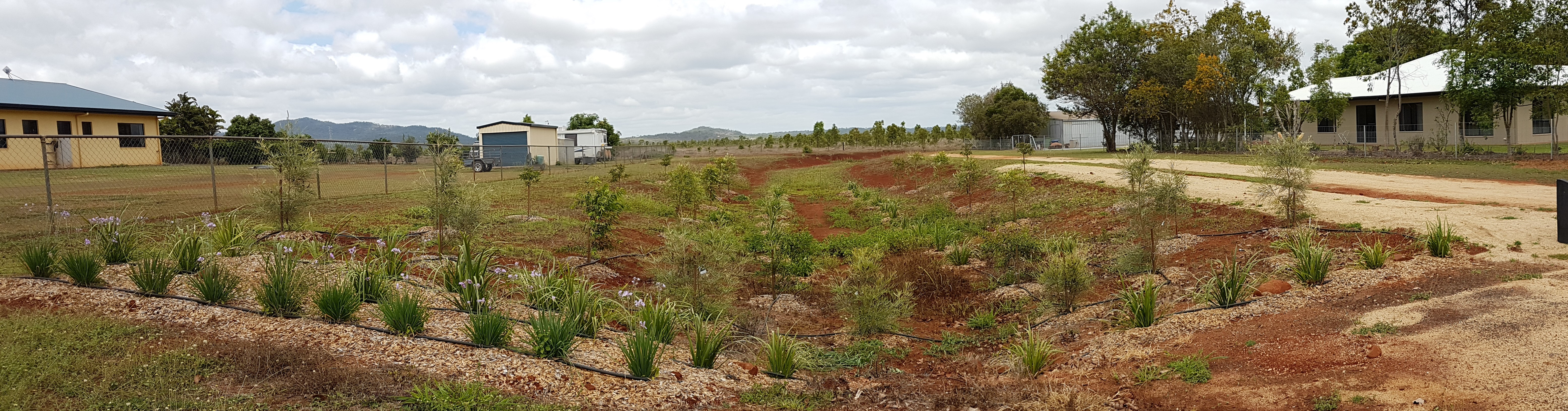 landscaping 1v2