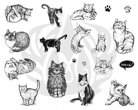 Cats DSS0120