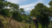 Monks and nuns farming the land of a Taoist monastery n Lake Atitlán, Guatemala