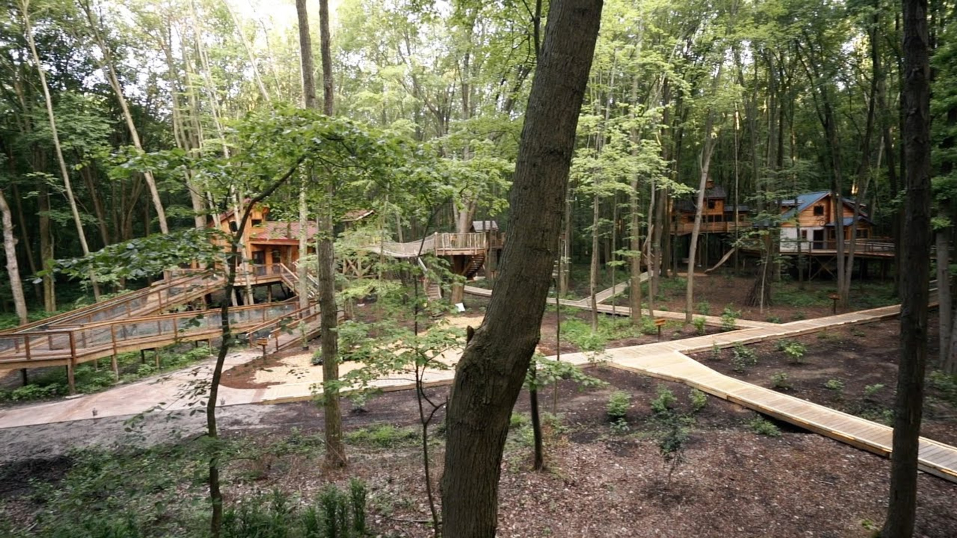Courageous Community Services   Treehouse Raffle Promo