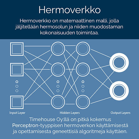 hermoverkko_info.jpg