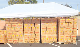 Food & Product Giveaway (18).jpg